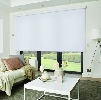 theater roller blind