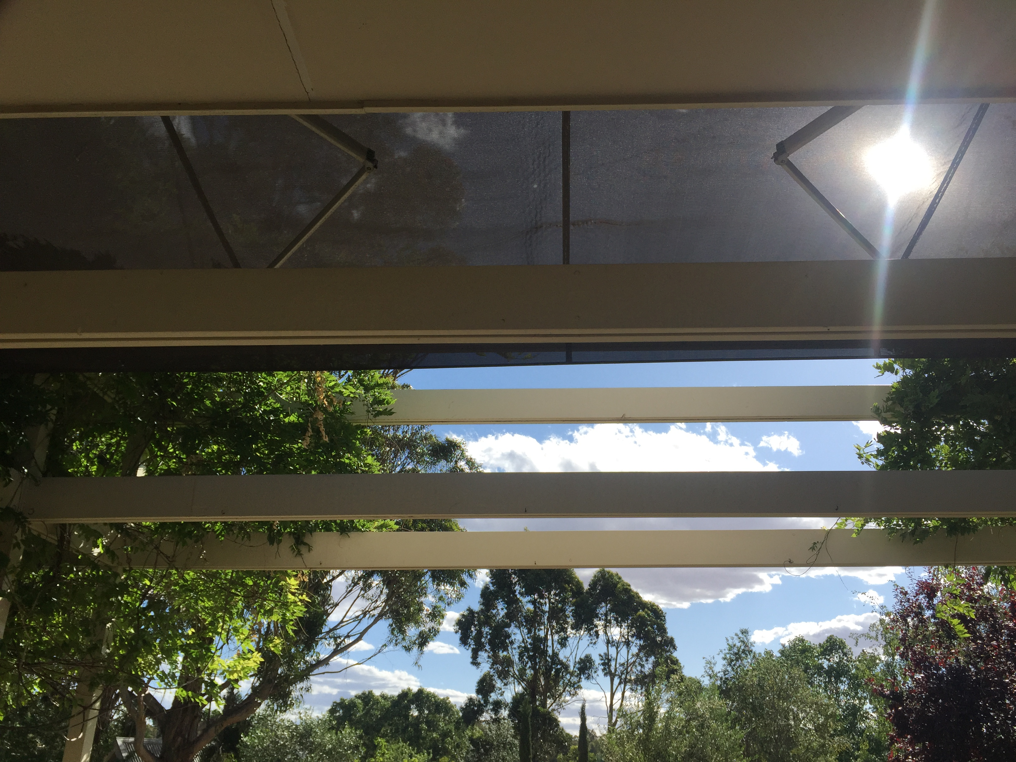 folding arm awning daylesford with mesh fabric